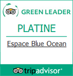 trip Advisor Green Leader