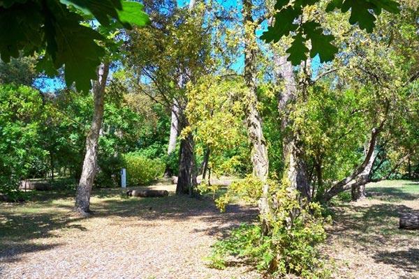 Hébergement Tentplekken - camping Blue Océan