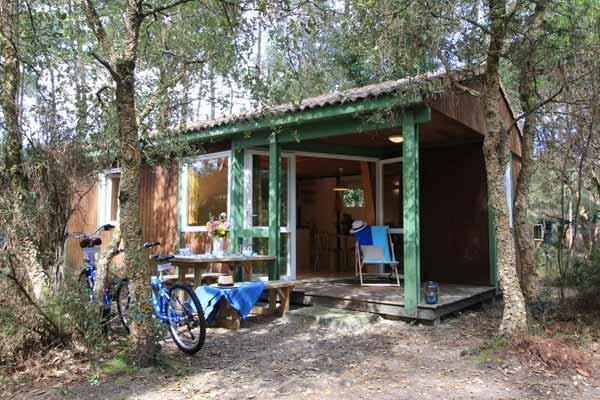 Hébergement Chalet - camping Blue Océan